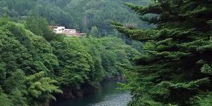 塩沢温泉七峰館、道の駅飛騨たかね工房、6月以降のご利用について