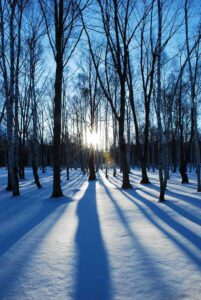 1月25日から2月7日、日帰り温泉は休業となります 塩沢温泉七峰館